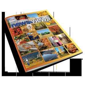 newsviewsfall2013-copy