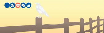 white crow on fence post